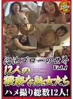 溜池ゴローの世界 12人の猥褻な熟女たち Vol.1 ダウンロード