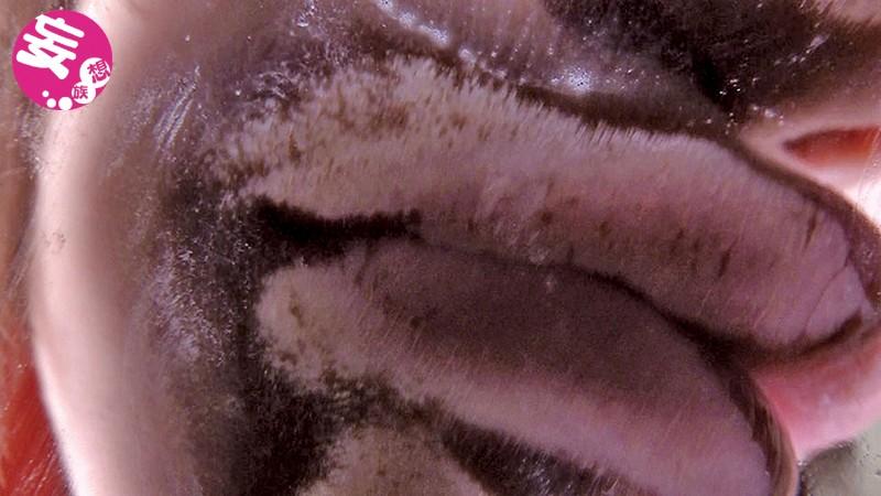 ヴァーチャルべろチュウ Lesbian Kiss 画像1