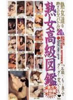熟女高級図鑑 gvg002のパッケージ画像
