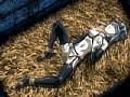 姫騎士リリア Vol.04 キリコの復讐sample12