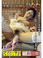 家畜コレクターvol.03 淫乱マゾ女社長ひなた ダウンロード