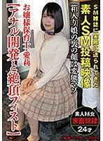 お嬢様保育士・愛莉【アナル開発と絶頂フィスト】(家畜コレクターvol.05)