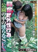 興奮!野外性行為 公園の中の淫らなSEX