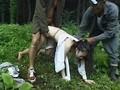 [NASH-054] 拉致 監禁 押し込み 通りすがり 強制ナンパで強姦陵辱された女たちの慟哭11名の被害者