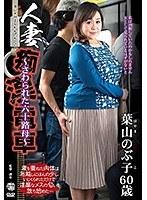 人妻痴漢電車〜さわられた六十路母〜 葉山のぶ子 ダウンロード