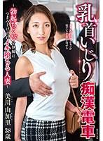 乳首いじり痴●電車~勃起ちくびを執拗につまみ上げられイキ堕ちる人妻~ 美川由加里