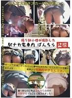 撮り鉄小僧が撮影した駅ナカ電車内ぱんちら盗撮 ダウンロード