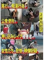 計画的犯罪 尾行され痴漢行為や公衆便所で押し込みレイプ被害者の女性たちの悲惨な映像記録 ダウンロード