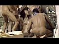 公共の営業中サウナに全裸の女優を放り込め!! 2のサンプル画像