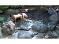 人里離れた山奥にある温泉宿 混浴風呂に仕込んだカメラが捉え...sample8