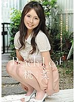 Peach Leaf 桃葉 ダウンロード