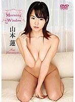 Morning Window 山本蓮