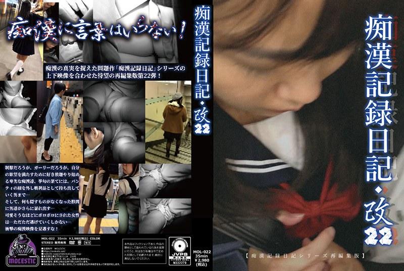 痴●記録日記・改22 パッケージ画像