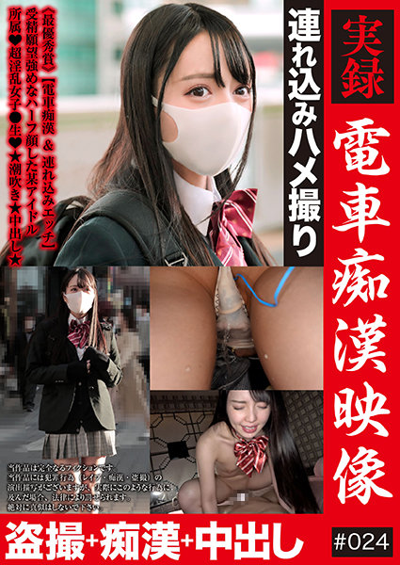 実録 電車痴漢映像 #024