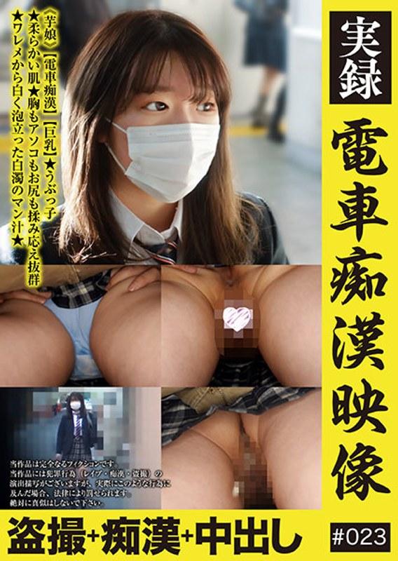 実録 電車痴漢映像 #023