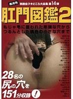 村山かづは 肛門図鑑2