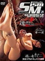 SM ism ダウンロード