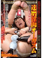 達磨淫肉オーガズム vol.1 有本紗世 ダウンロード
