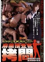 女の惨すぎる瞬間 麻薬捜査官拷問 女捜査官FILE04 速水美桜の場合 ダウンロード