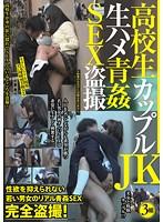 ●校生カップル生ハメ青姦SEX盗撮JK ダウンロード