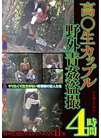 高○生カップル野外青姦盗撮 4時間 ダウンロード