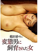 範田紗々 成人映画、Vシネマ、ハイビジョン、ドラマ、単体作品 範田紗々の変態男に飼育された女