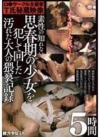 ロ●サークル主催者T氏秘蔵映像 素性の知れない思春期の少女を犯して回した汚れた大人の猥褻記録 5時間 ダウンロード