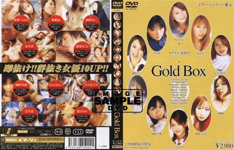 アダルト福袋 Gold BOX パッケージ