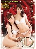 痴女性感エステルーム3D ダウンロード