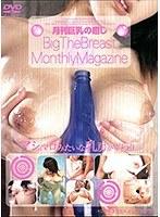 月刊巨乳の癒し ダウンロード