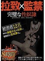完璧な性奴隷BEST vol.02 少女拉致、監禁、調教録。 ダウンロード