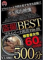 盗撮 プライベート流出500分 BEST File.01