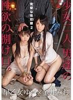 完璧な性奴隷 2 ダウンロード