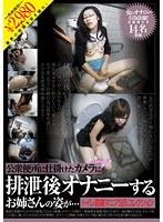 公衆便所に仕掛けたカメラに排泄後オナニーするお姉さんの姿が… トイレ盗撮マニアS氏コレクション ダウンロード
