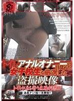 トイレでアナルオナニーに目覚めた女子校生を厳選した盗撮映像 ダウンロード