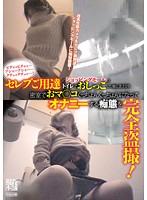 ピチャッピチャッ…プシャープシャー…クチュックチュッ…!セレブご用達のショッピングモールのトイレでおしっこした後にまさか!!密室でおマ○コぐっちょんぐっちょんになってオナニーする痴態を完全盗撮! ダウンロード
