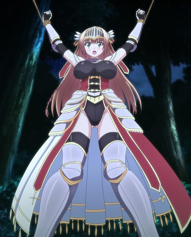 魔剣の姫はエロエロです ツンデレ姫騎士の矮小鎧前罵詈後突◆ 画像1