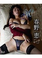 Mistress 番外編/春野恵