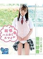 純情ハニカミ・スマイル/澄川紗香