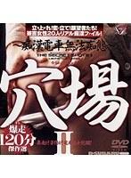穴場 2 〜痴漢電車無法痴態〜 ダウンロード