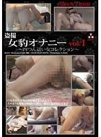 盗撮 女豹オナニー vol.1 〜四つん這いの女コレクション〜