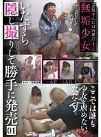 「お母さんには内緒だよ…」無垢少女いたずら隠し撮りして勝手に発売01 ダウンロード