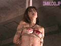 ワイフ 蛇縛の奴●ミセス25