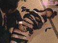 社長秘書 蛇縛の幽閉秘書8