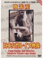 欧米産 日本女性レ●プ映像