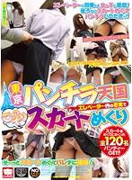 東京パンチラ天国 エレベーター内の密室でこ〜っそりスカートめくり ダウンロード