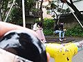 愛媛の田舎っぺ爆乳素人さん 優子/公務員/J-cup