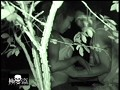 (ktme00008)[KTME-008] リアル盗撮!夜の公園で青姦カップルを激撮!! ダウンロード 2