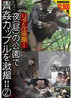 リアル盗撮!夜(昼)の公園で青姦カップルを激撮!! 2 ダウンロード