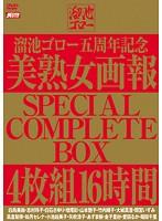 溜池ゴロー五周年記念 美熟女画報 SPECIAL COMPLETE BOX 16時間 ダウンロード